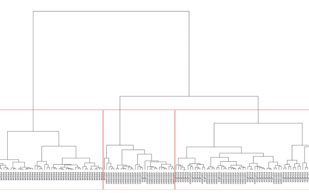 Wie funktioniert die Clusteranalyse?